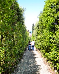 Tuscany (csantarin) Tags: sun gardens tuscany tall bushes boboli