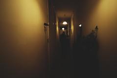 Untitled (3DBHAMJAM) Tags: hall nikon empty gone cinematography boho storytelling yellowish