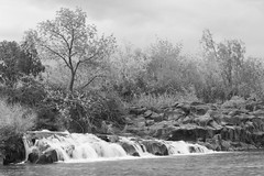 cassie_p_002 (cassielpl) Tags: motion waterfall snakeriver idahofalls