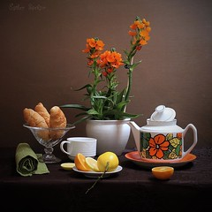Sunday Tea (Esther Spektor - Thanks for 11+ millions views..) Tags: flowers stilllife food orange brown white plant green cup glass yellow fruit breakfast composition canon stand lemon ceramics pattern tea linen availablelight napkin sunday plate stilleben pot slice croissant teapot citrus arrangement tabletop lid bodegon naturemorte naturezamorta creativephotography artisticphoto naturamorts estherspektor