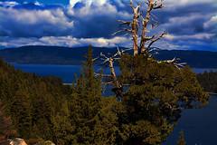 Emerald Bay California, USA (Pesky Design) Tags: trees blue california lakes laketahoe tahoe skies emeraldbay travel adventure vacation mountains photoshop nikon water nature autofocus