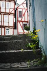 Green town (Stefan Baudach) Tags: green stairs 35mm town nikon dandelion treppe nikkor stufen lwenzahn unkraut treppenstufen