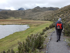 "Le Parc National Cotopaxi <a style=""margin-left:10px; font-size:0.8em;"" href=""http://www.flickr.com/photos/127723101@N04/27167111740/"" target=""_blank"">@flickr</a>"