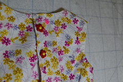 Fancy buttons (shireye) Tags: dress elise buttons