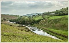 Luner perspective (david.hayes77) Tags: trees landscape farmland virgin pasture cumbria bracken 2016 tebay pendolino riverlune class390 lowborrowbridge lunegorge fairmileroad 9m59