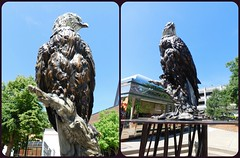 OUR GUARDIAN by Eric Thorsen (Visual Images1) Tags: sculpture art public diptych siouxfalls picmonkey