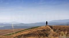 20160704_crete_senesi_siena_tuscany_887t7 (isogood) Tags: italy landscapes horizon country scenic tuscany crete siena cretesenesi asciano senesi