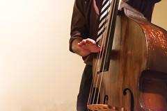 _DSC4271-Edit-Edit (davefaulkner) Tags: bass mikebennett doublebass