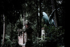 Beflgelte Welt (Rubina V.) Tags: trees friedhof grave angel engel bume frankfurtammain grabsttten