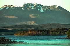 Like a dormant humpback whale............. (Scotland by NJC.) Tags: scotland alba caledonia  esccia  kotska skotsko skotland schotland skotlanti cosse schottland  scozia   skottland szkocja scoia  lakes lochs reservoirs waters meres tarns ponds pool lagoon lago  jezero s meer jrvi lac see   innsj jezioro  mountains hills highlands peaks fells massif pinnacle ben munro heights  montanha  planina hora bjerg berg montaa vuori montagne  montagna fjell