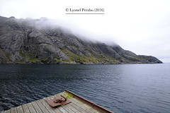 Lofoten_Early_June_2016_II (LyonelPerabo) Tags: norway norge arctic polar north northern scandinavia nordic northnorway nordnorge nord summer 2016 june outdoor landscape sky nordland nusfjord lofot lofoten isle isles island islands archipelago flakstad flakstadoy flakstadoya flakstady flakstadya skies white grey light blue water sea cost coast ocean fjord marine maritime mountain mountains hill hills rock rocky stone stony cliff cliffs nature mist misty cloud cloudy peak peaks snow snowy ice icy