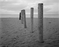 Barrier (GOJR.) Tags: monochrome bw 6x7 film analog meduimformat fujifilmneopanacros100 mamiyasekorc90mmf38 mamiyarb67pros sand beach aguadilla crashboat