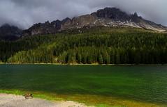 Lake Misurina way of life _MG_9128m(1) (maxo1965) Tags: lake ducks mallard dolomites veneto cadini lakemisurina