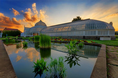 Reflection (Brad Truxell) Tags: sunset reflections garden pond pittsburgh greenhouse botanicalgardens hdr phippsconservatory sigma1020mm nikond7000
