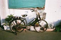 A glimpse of Tokyo  (tsubasa8336) Tags: summer film bicycle japan tokyo olympus tsukiji fujifilm filmcamera  mjuii      filmphotography