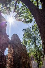 Ruins in the old city (mikhailanikaev) Tags: ruins ancient tree tower brick stone siem oriental travel history strangler old religious historic forest architecture sacred root tourism southeast rock landmark banyan building complex famous thom temple religion monument asian jungle