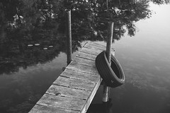 (wickedmartini) Tags: trees summer blackandwhite reflection nature water monochrome dock weathered