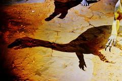 Algo emocional (Gales 08-2013) por Seigar (12) (Seigar) Tags: seigar gales welsh uk travel trip traveller travelling viajar viaje viajero vision vida visions vacation vacaciones viajando vivo different diferente descartes love
