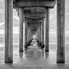"""Infinite View"" By Robert Park  http://www.robert-park.com (Robert Park Photography) Tags: california travel vegas newyork art tourism nature racetrack wonder point landscape photography utah nationalpark gallery photographer natural lasvegas wildlife nevada fineart soho galleries national collectors naturalwonders backwhite fineartphotography macrophotography autofocus lasvegasstrip wildlifephotography striplas thepalazzo lasvegasshopping awesometrees robertpark simplysuper theshoppesatthepalazzo ""flickraward photoenlargements photographycollectors mygearandmepremium mygearandmebronze dblringexcellence flickrbronzetrophygroup tplringexcellence newjerseytnc10 ""californiatnc11"" photocontesttnc12 rememberthatmomentlevel1 robertbpark naturalwondersgallery theshoppesatthepalazzonevadagallery uploaded:by=flickrmobile httpwwwrobertparkcom robertparkcom flickriosapp:filter=nofilter vigilantphotographersunite vpu4 vpu6 freshwatertnc"