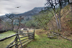Back Roads of Washington II (h_roach) Tags: bird nature horizontal rural fence landscape outdoors scenery nopeople explore pacificnorthwest washingtonstate