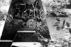 (pollution lumire) Tags: leica blackwhite sl2 leicaflex aristaeduultra100 summicron50f2 bwfp