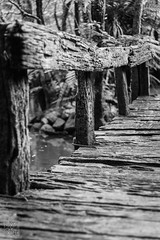 (atogdude) Tags: blackandwhite bw canon 50mm rustic 18 woodenbridge lightroom staglands