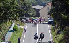 Vuelta 6: Peloton in view (Majorshots) Tags: galicia galiza vuelta stage4 peloton acorua vueltaespaa pelotn etapa4 negreira ocamioreal lavueltaaespaa2013 etapafindelmundo lalnafisterra vueltapeloton vueltapelotn