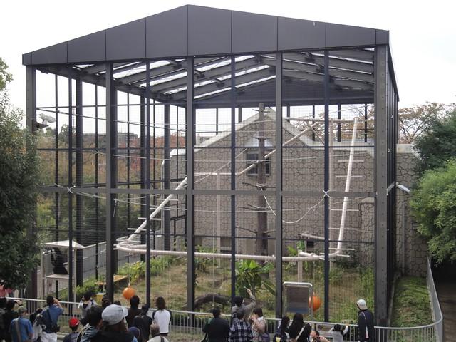 テナガザルの飼育舎です。|名古屋市東山動植物園