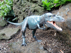 Pachyrhinosaurus Vs Gorgosaurus Gorgon pachyrhinosaurus Walking With Dinosaurs Edmontonia