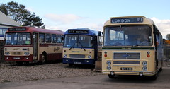 Scottish line up at Lincolnshire Vintage Vehicle Society open day (Hesterjenna Photography) Tags: travel bus coach tour transport scottish tourist western lincoln express eastern midland psv lvvs