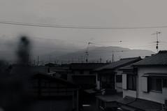 grafica_jp_flickr-377 (grafica.tokyo) Tags: japan nikon f2 40mm voigtlnder itami d90 ultron