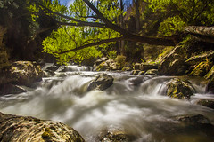 _MG_7817 (Red Dog Photography) Tags: new longexposure newzealand holiday cold green fall water canon island waterfall stream long exposure south zealand nz southisland queenstown 5d flowing mkii 2013 canon5dmkii 5dmkii