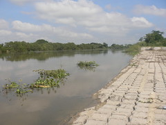 Entre el límite (Caneckman) Tags: naturaleza agua cielo tabasco villahermosa