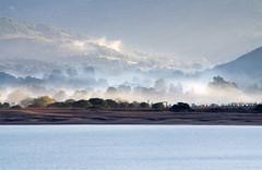 Corsican Mist (Patrick Costello) Tags: cruise france port dawn harbour corsica corsedusud propriano