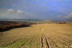 I PAESAGGI DELLA VAL D'ORCIA (Toscana) (Danilo Agnaioli) Tags: landscapes toscana valdorcia paesaggi mygearandme mygearandmepremium