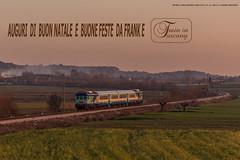 EDZ 13 A MONTE SAN SAVINO (Frank Andiver TRAIN IN TUSCANY) Tags: italy train italia trains tuscany toscana treno treni frankandiver trainintuscany