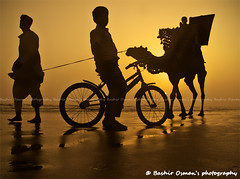 DUSK (Bashir Osman) Tags: pakistan sunset beach strand evening abend tramonto sonnenuntergang dusk playa camel karachi soir plage clifton spiaggia sindh tarde paquisto sera pue