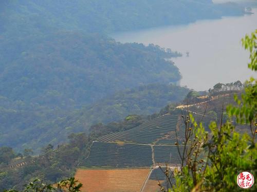 雲海山步道 (27).jpg