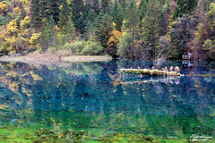 jizhaigou (PiotrKroczak) Tags: china autumn forest automne asia asie jiuzhaigou parc fort chine color saison vision:mountain=0539 vision:outdoor=092 vision:sky=0702