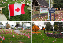 George Derby Centre (theflagshopvancouver) Tags: canada flags remembranceday causes 2013 stickflags customflags vision:outdoor=0875