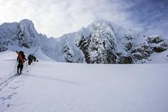 On a ski tour (sylweczka) Tags: sea snow mountains ice landscape island glacier greenland sylweczka apusiaajik