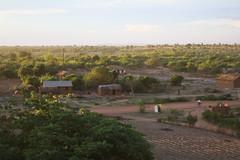 tanzania stora 2184