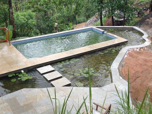 """natural swimming pool at Jade Munnar B&B • <a style=""""font-size:0.8em;"""" href=""""http://www.flickr.com/photos/119251693@N05/14151091576/"""" target=""""_blank"""">View on Flickr</a>"""