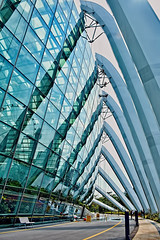Flower Dome (chooyutshing) Tags: singapore cleaning marinabay glassfacade baysouth flowerdome gardensbythebay