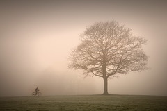 Cycling...... (Digital Diary........) Tags: uk mist fog cycling mood cyclist sthelens merseyside sherdley sherdleypark