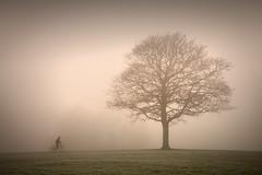 Cycling...... (Digital Diary........) Tags: uk mist fog cycling mood cyclist sthelens merseyside sherdley sherdleypark