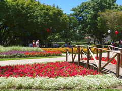 Praça das Flores (Jakza) Tags: flores ponte jardim praça jakza nanatureza