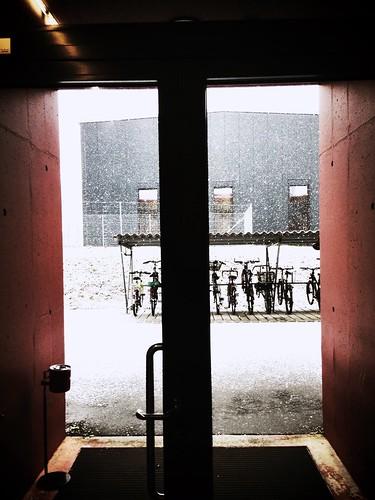 Snowy!