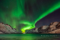 magic of the night (pixellesley) Tags: winter sky snow mountains seaweed cold water norway reflections stars rocks nightshot arctic aurora fjord nightsky icy northernlights auroraborealis subzero tromso ersfjordbotn