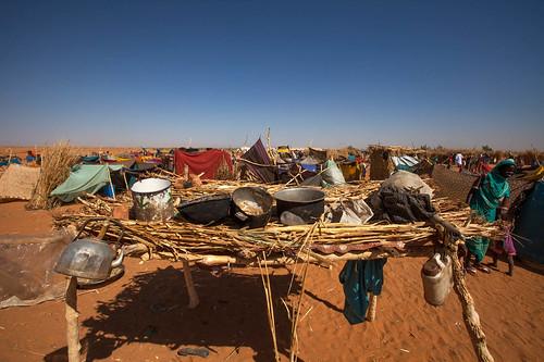 Newly Displaced in ZamZam